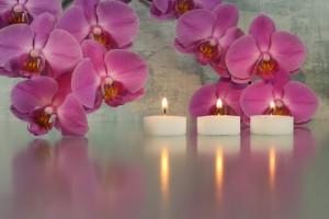 Kerzen mit Orchideen